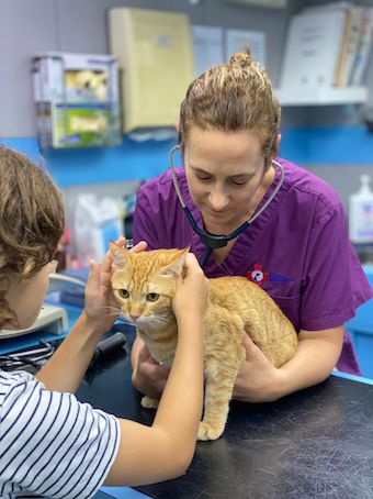 Meet the New Owner of Sai Kung Animal Hospital